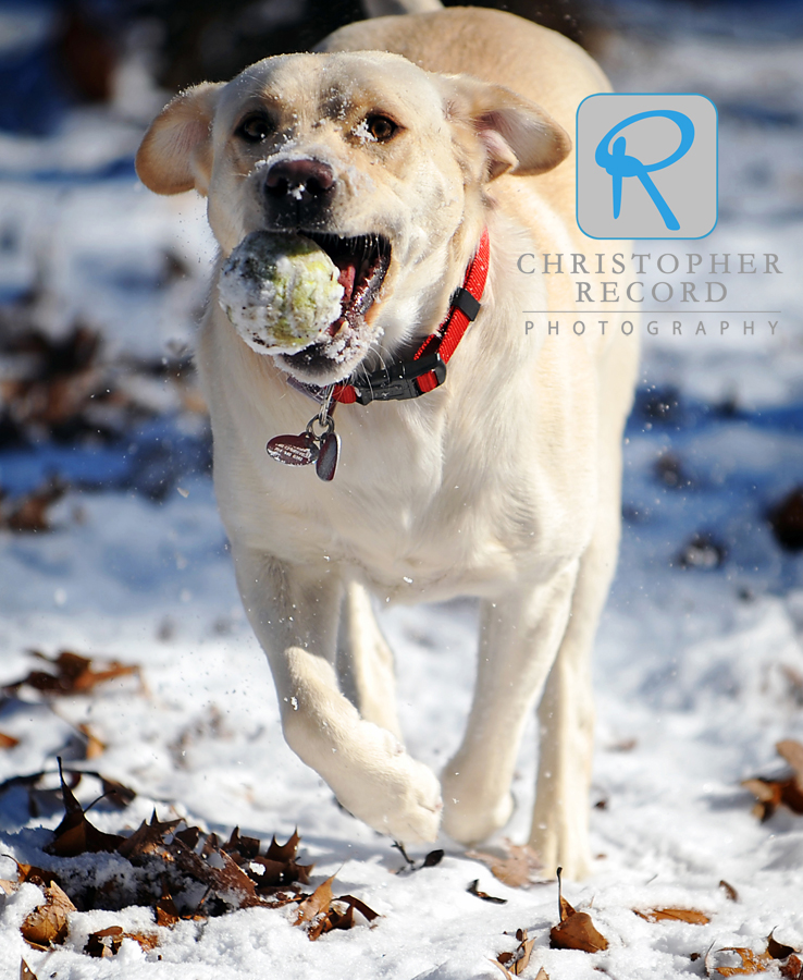 Snow adds some flavor to a good tennis ball